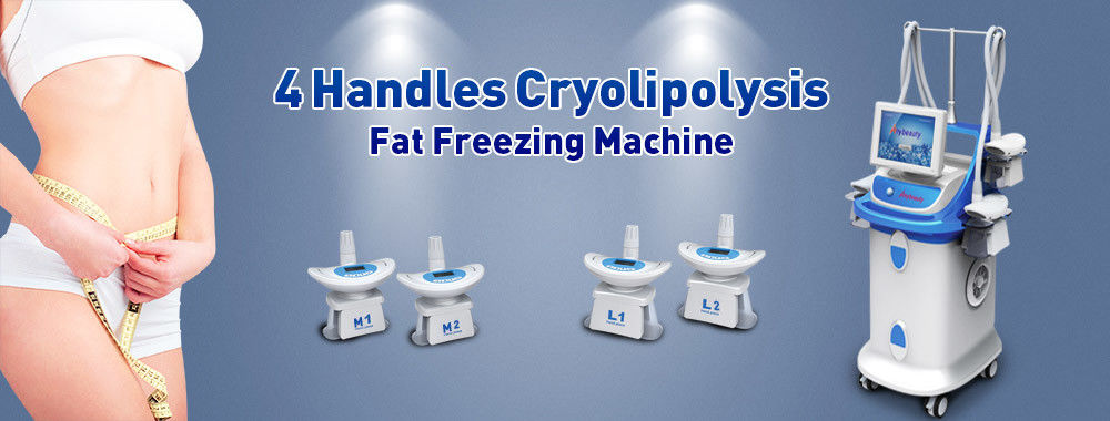 China am besten Cryolipolysis Slimming Machine en ventes